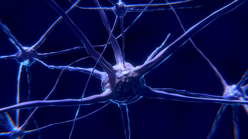 neurochirurgie en Tunisie